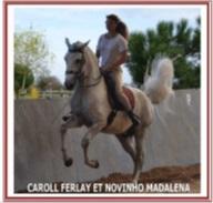 centre-equestre-2